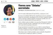 Artigo Diário de Notícias